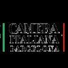 Logo-Camera-v4
