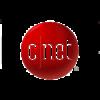 cnet-meta