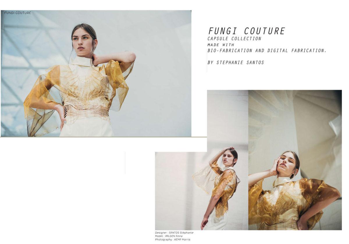 FUNGI-by-Stéphanie-Santos-1